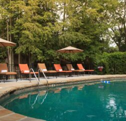 Plush pool chairs are lined up behind a turquoise blue pool with green trees in the background.